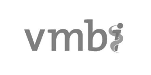 vmbi-ram-infotechnology-cure-partner